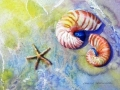 tides-in-web-photo