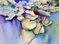 blue-water-green-heron-web-photo
