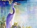 great-blue-heron-web-photo