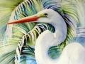 palms-great-egret-web-photo
