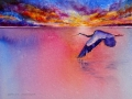 sky-dancer-web-photo